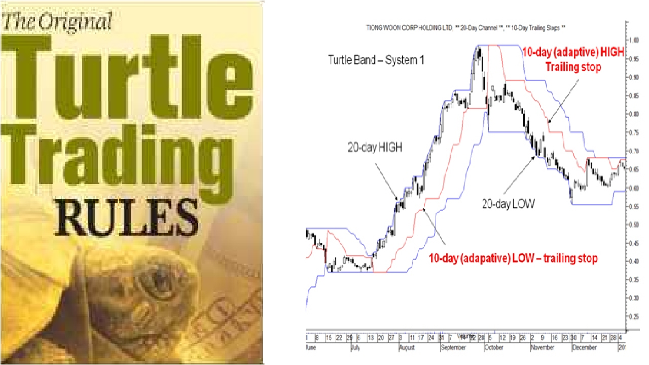 Turtle Traders System 1
